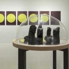 Enclos Charbon, bois, miroir, méthacrylate, fer 54x54x115cm