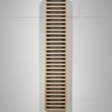Salon B Bibliothèque en bois, édition de 30 livres, 225x25cm